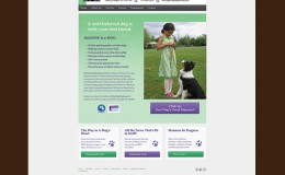 tara-winkler-graphics-web-design-customization-in-step-dog-training