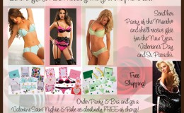 tara-winkler-graphics-web-elements-panties-dot-com